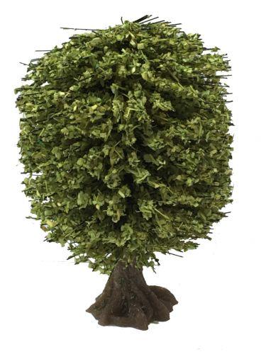 Large Summer Tree