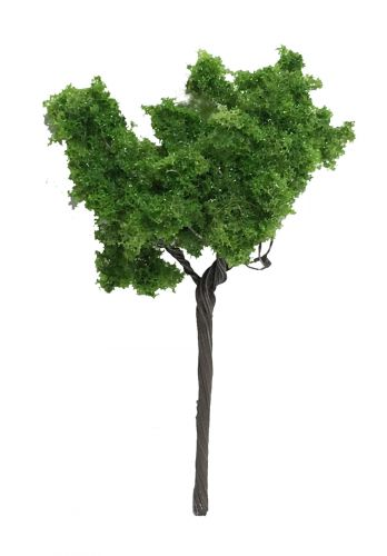 Small Summer Tree