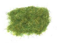 Summer Dry Long Grass
